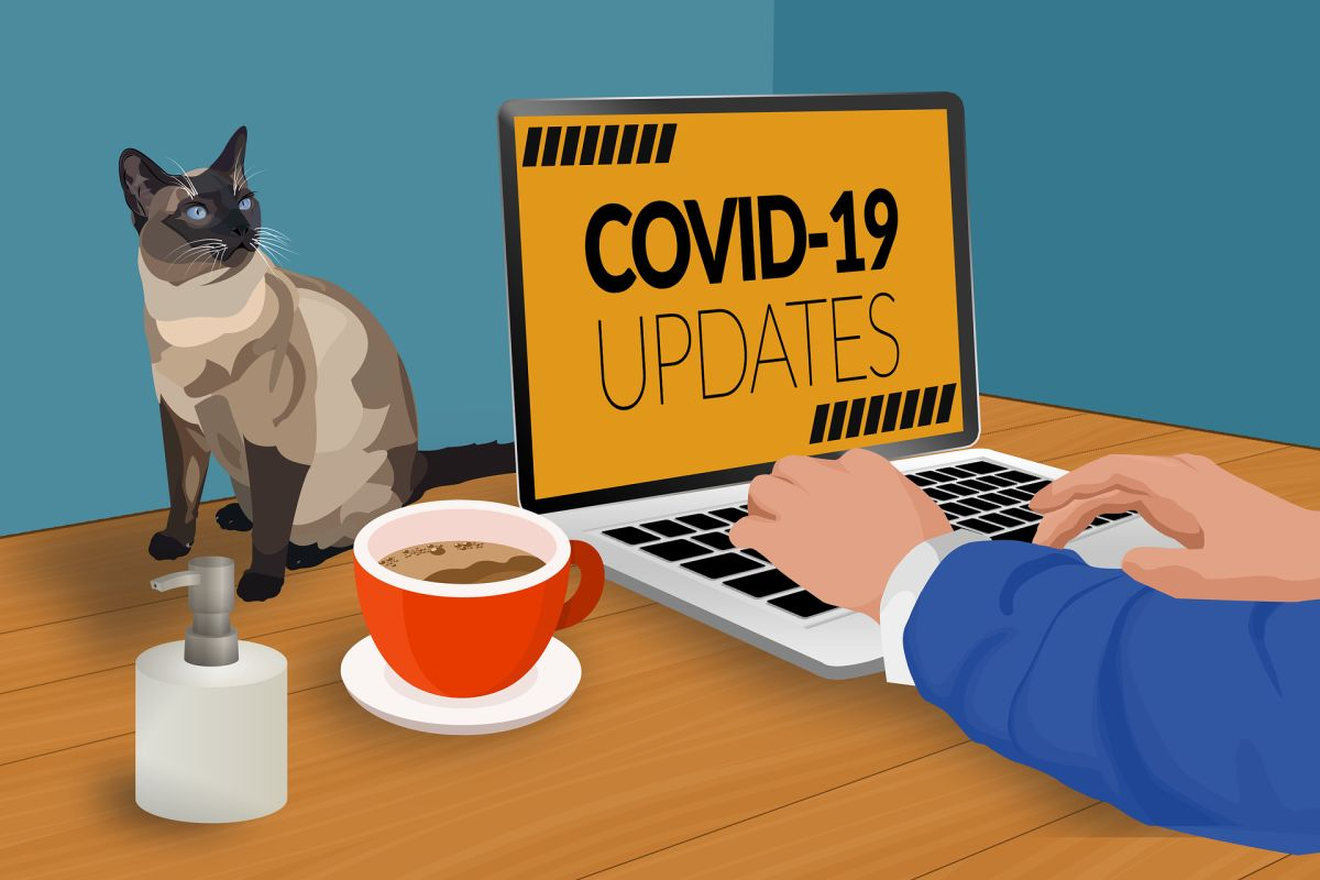 Branchen-News zu Covid 19