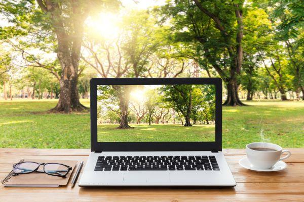 Ein Schreibtisch steht vor einem Wiese und Bäumen, auf dem Schreibtisch steht ein Laptop.