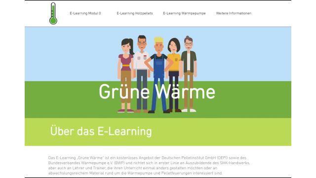 Screenshot der Website www.grüne-wärme.info.