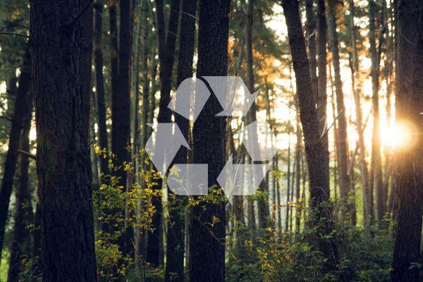 Gelebte Nachhaltigkeit bei Duscholux