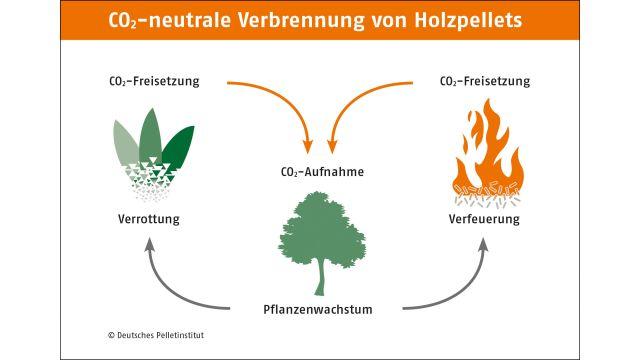 Das Bild zeigt eine Grafik, welche die CO2-neutrale Verbrennung von Holzpellets zeigt.