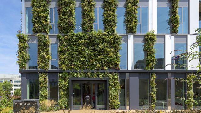 Foto: Die technischen und gestalterischen Möglichkeiten sind heutzutage nahezu unüberschaubar. So werden Fassaden und Wände beispielsweise begrünt, um auch in den Innenräumen durch vertikale Bepflanzungen ein angenehmeres Raumklima entstehen zu lassen.