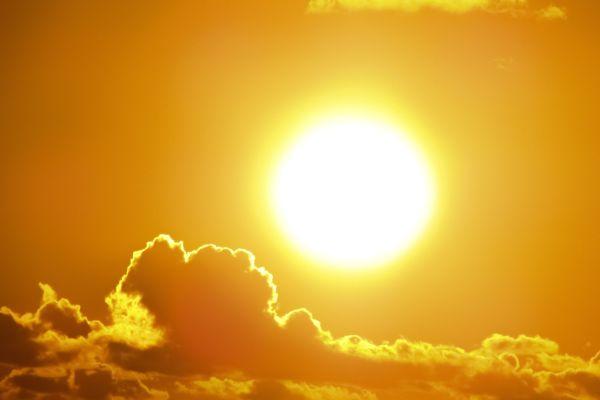 "Solarwatt ""EnergyManager"" integriert Elektromobilität"
