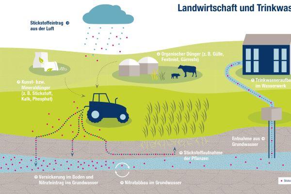 Wie Stickstoff und Nitrat können auch multiresistente Keime und Antibiotika über die Landwirtschaft in das Grundwasser geraten.