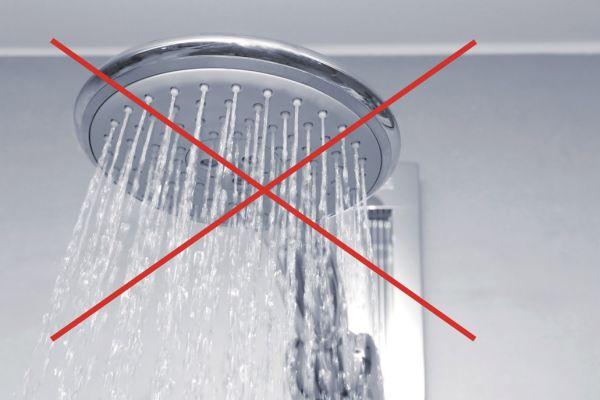 Das Bild zeigt einen Duschkopf.