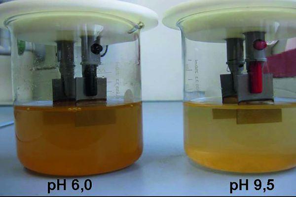 Niedrig legierter Stahl nach 18 h in chloridhaltigem Leitungswasser bei saurem (6,0) und basischem (9,5) pH-Wert. Bereits die unterschiedliche Braunfärbung der Flüssigkeit zeigt, dass im sauren Bereich deutlich mehr Eisen (ca. 400 %) aus der Probe austritt, als bei einem passivierenden alkalischen pH-Wert.