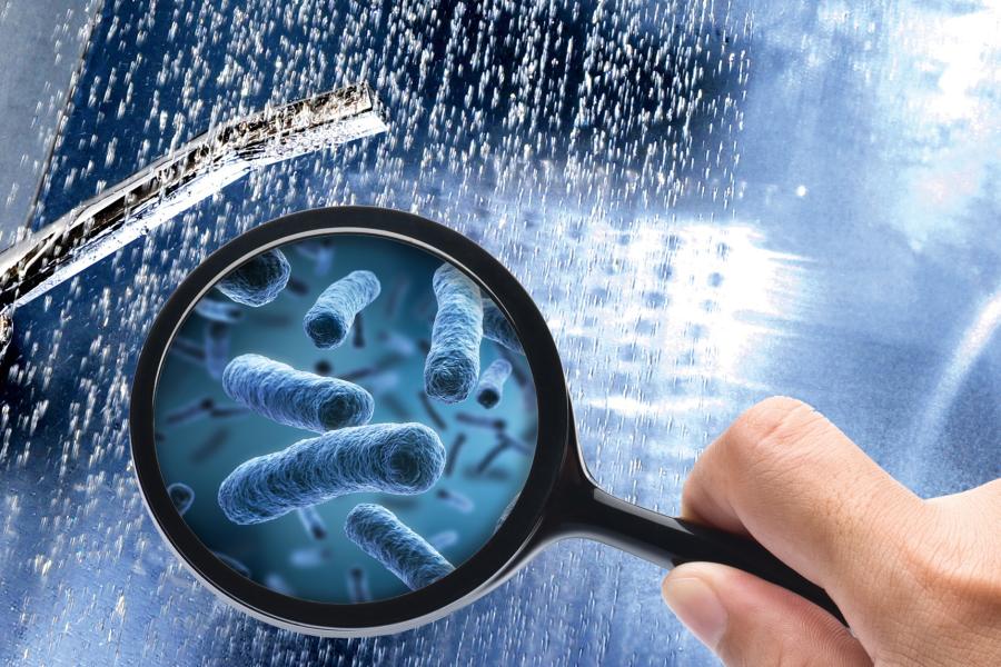 Das Bild zeigt eine Lupe, in der die Legionellen (Stäbchenbakterien) sichtbar werden.