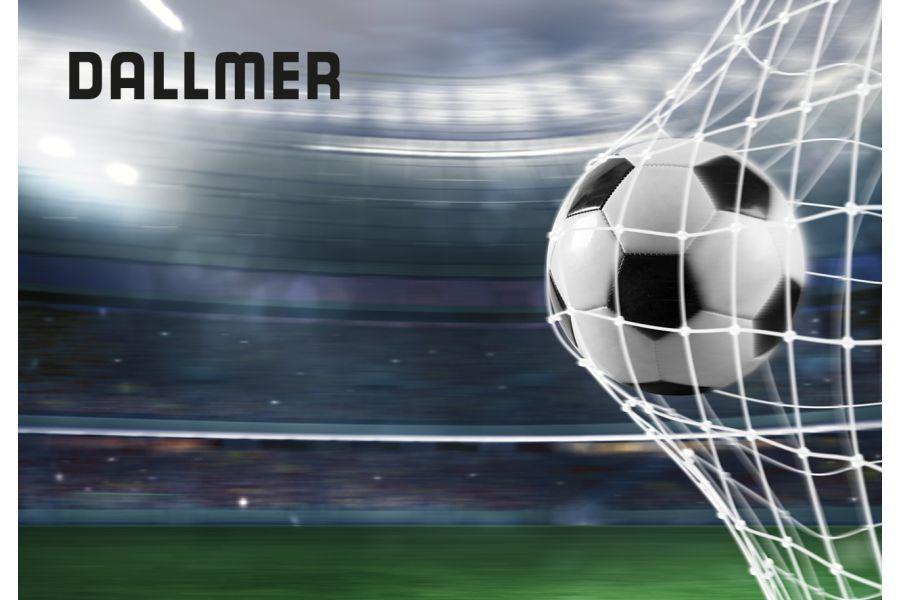 Das Bild zeigt das WM-Tippspiel-Logo.