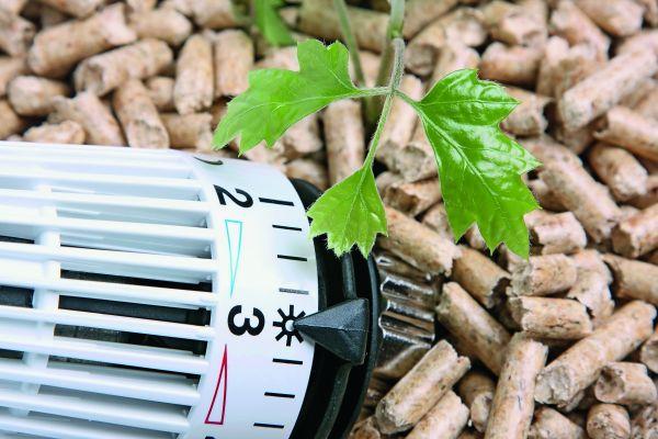 Holzpellets und ein Heizkörper-Thermostat.
