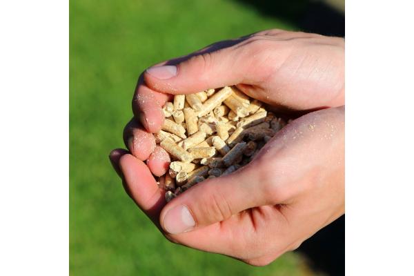 Energielabel ab April auch für Holzheizungen