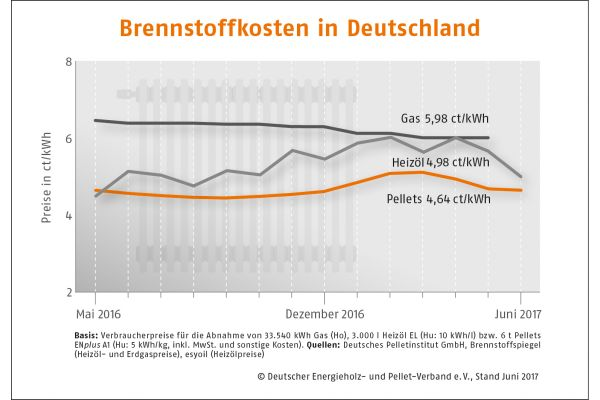 Das Diagramm zeigt die Brennstoffkosten in Deutschland im Juni 2017.