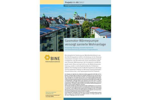 Das Cover der BINE-Projektinfo