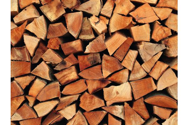 Moderne Holzenergienutzung im Südwesten