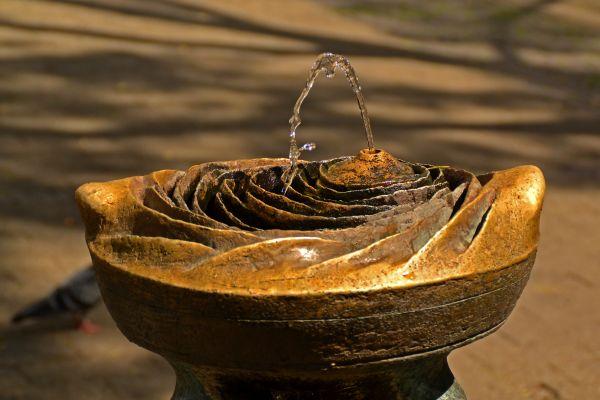 (Im) Wasser ist Leben… manchmal mehr, als dem Dürstenden lieb ist. Ein Merkblatt des BfR hilft, riskante Verkeimung in Wasserspendern zu vermeiden.