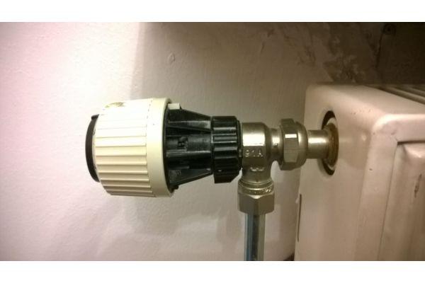 Ein Heizkörper-Thermostat.