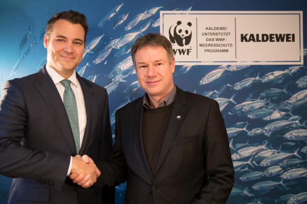 Kaldewei und WWF: gemeinsam für den Meeresschutz