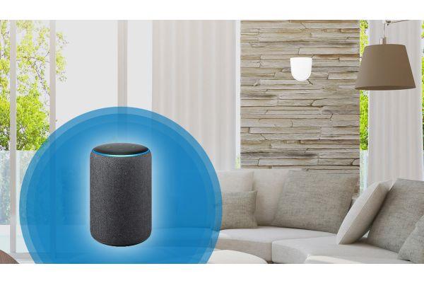 Amazon Echo in einem Wohnzimmer.