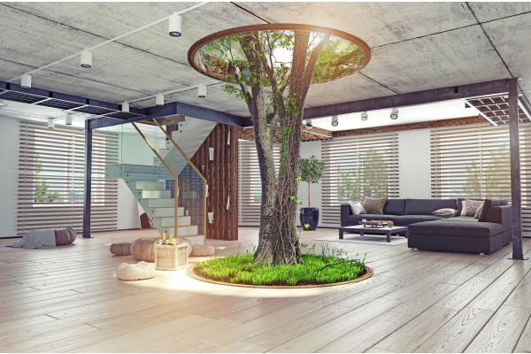 Ein Baum sthet in einem Raum, seine Äste wachsen durch ein Loch in der Decke.