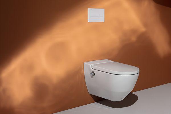 Das Bild zeigt das Dusch-WC