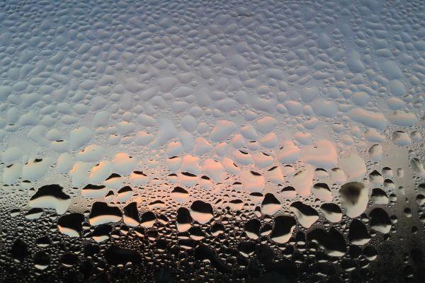 Wassertropfen auf einer Glasscheibe.