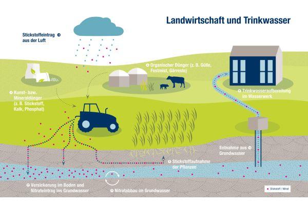 So gelangt Nitrat (NO3) in das Grundwasser.