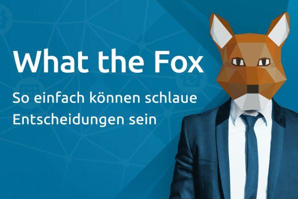 Werbung für WattFox.