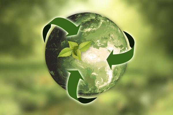 In Verantwortung für die Zukunft: SanitärJournal klimaneutral