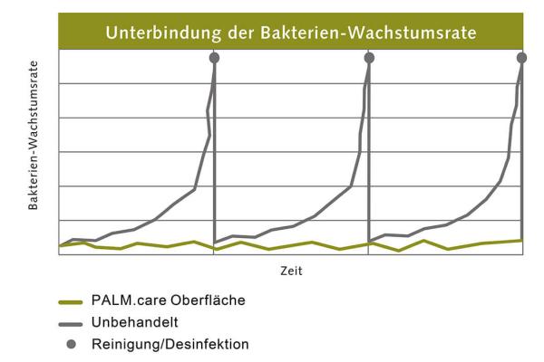 Palme: Profi-Oberflächen mit effektivem Langzeitschutz