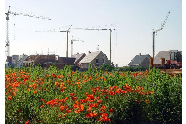 """Hier """"blüht"""" der Wohnungsbau. Anderswo wird er durch ineffiziente Verwaltungen ausgebremst…"""