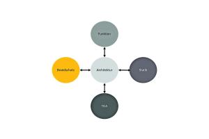 Die Grafik illustriert den Prozess der parallelen Planung.