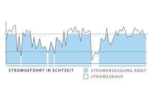 """Die Grafik gibt einen Überblick über die Stromerzeugung eines """"XRGI""""-Blockheizkraftwerks."""