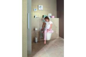Das Bild zeigt das WC-Element Eco Plus von Viega.