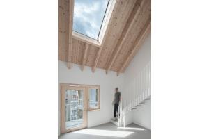 Klares Farbkonzept: Graue Sichtestrichböden, weiße Wandflächen und Treppen unter einer Decke aus Fichtenholz.