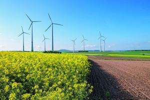 Windräder neben einem Feld gewinnen regenerative Energie durch Windkraft.